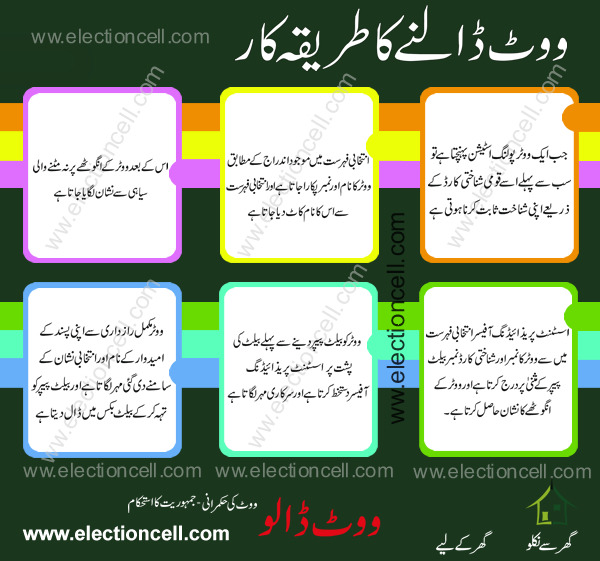 how to cast a vote in election 2013